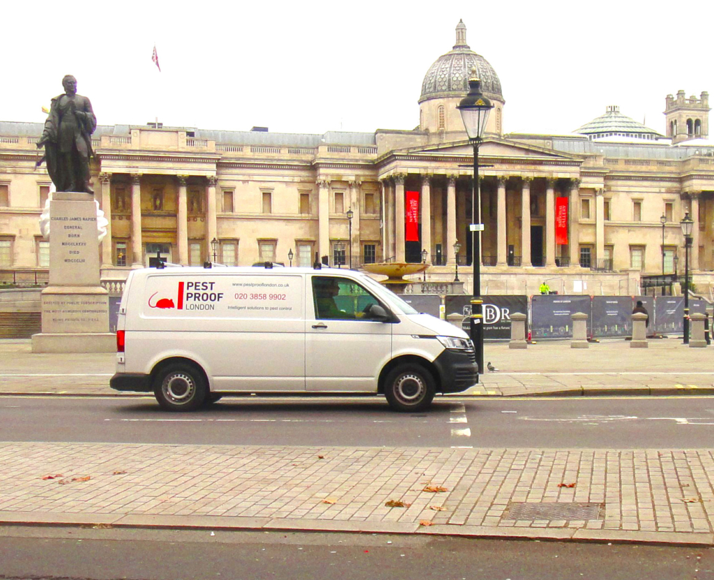Van in London